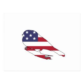 """Cartão Postal Bullfinch """"bandeira americana """""""