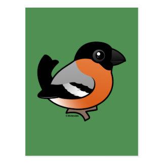 Cartão Postal Bullfinch euro-asiático
