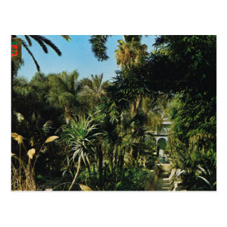 Cartão Postal C4marraquexe, jardins de Majorelle, Marrocos