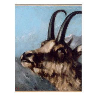 Cartão Postal Cabeça da gazela por Gustave Courbet