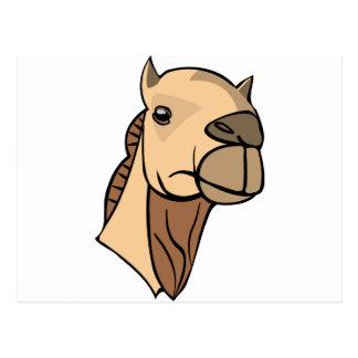 Cartão Postal Cabeça do camelo