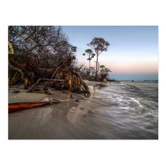 Cartão Postal Cabo San Blas, Florida