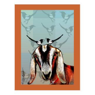 Cartão Postal Cabra com belas artes do magpie