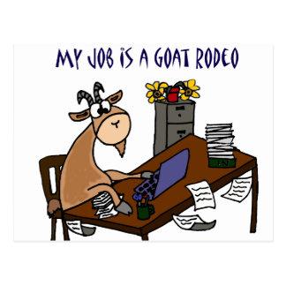 Cartão Postal Cabra engraçada no humor do trabalho do rodeio da