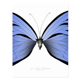 Cartão Postal Caçador azul do Azure da borboleta 2