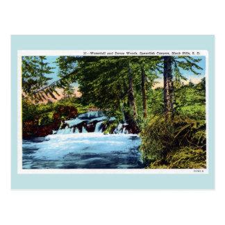 Cartão Postal Cachoeira, madeiras, garganta do Spearfish, Black