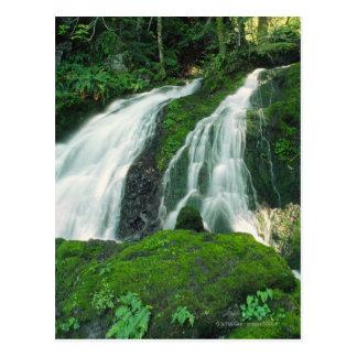Cartão Postal Cachoeira que cai sobre as rochas mossy, montagem