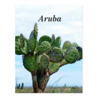 Cartão Postal Cacto de Aruban