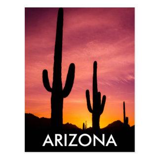 Cartão Postal Cacto do Saguaro no nascer do sol, arizona