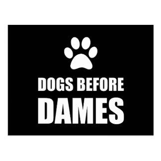 Cartão Postal Cães antes das damas Engraçado