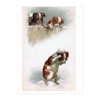 """Cartão Postal """"Cães que jogam vintage dos Snowballs"""""""