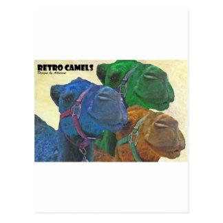 Cartão Postal camelos retros