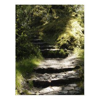 Cartão Postal Caminhada da natureza e foto cénico das etapas