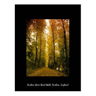 Cartão Postal Caminhada do outono