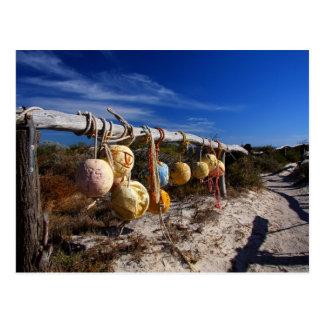 Cartão Postal Caminho à praia - Dongara - Austrália Ocidental