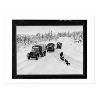 Cartão Postal Caminhões do Alasca de Dogsled & de exército