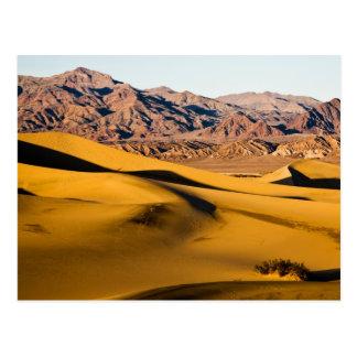 Cartão Postal Campo de jogos do deserto