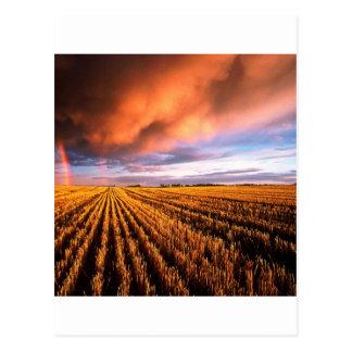 Cartão Postal Campo de restolho Saskatchewan do arco-íris Canadá