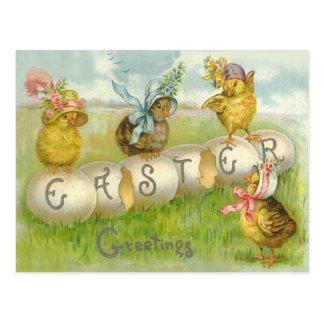 Cartão Postal Campo do pintinho do ovo da páscoa