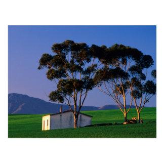 Cartão Postal Campos da casa de campo e de trigo de trabalhador