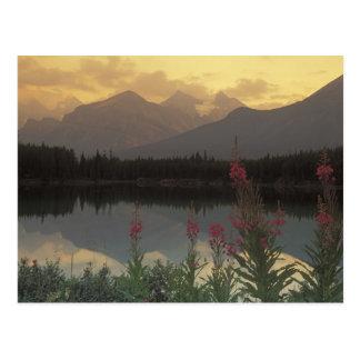 Cartão Postal Canadá, Alberta, Banff. Nascer do sol cénico de