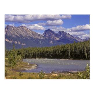 Cartão Postal Canadá, Alberta, parque nacional de jaspe. Grande