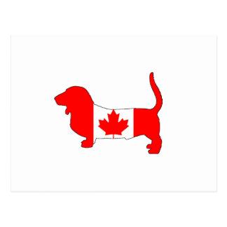 Cartão Postal Canadá Basset Hound