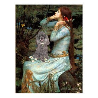 Cartão Postal Caniche (8S) - Ophelia assentada