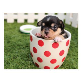 Cartão Postal Cão bonito na caneca