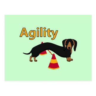Cartão Postal Cão da agilidade