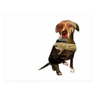 Cartão Postal cão da exposição dobro