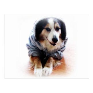 Cartão Postal Cão de Gangsta que veste o Hoodie