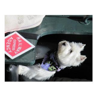 Cartão Postal Cão de Terrier da estrada de ferro