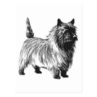 Cartão Postal Cão de Terrier de monte de pedras