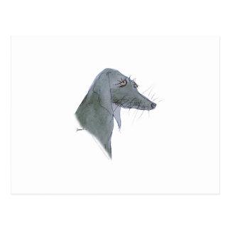 Cartão Postal Cão de Weimaraner, fernandes tony
