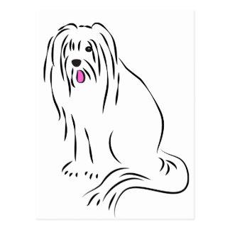 Cartão Postal Cão desgrenhado do Collie farpado bonito