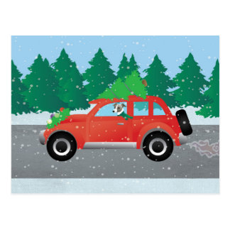 Cartão Postal Cão do galgo italiano que conduz o carro - árvore