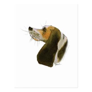 Cartão Postal Cão do lebreiro, fernandes tony