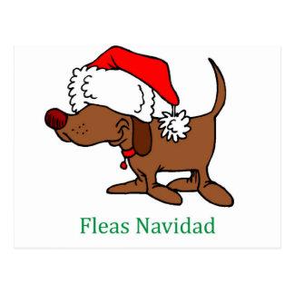 Cartão Postal Cão do Natal