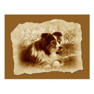 Cartão Postal Cão do vintage em tons do Sepia