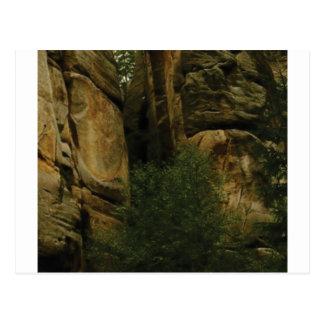 Cartão Postal cara amarela da rocha com árvores