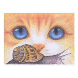 Cartão Postal Caracol e gato