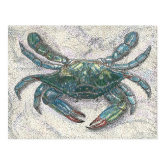 Cartão Postal Caranguejo azul de baía de Chesapeake