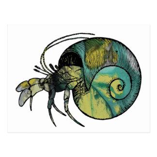 Cartão Postal Caranguejo de eremita