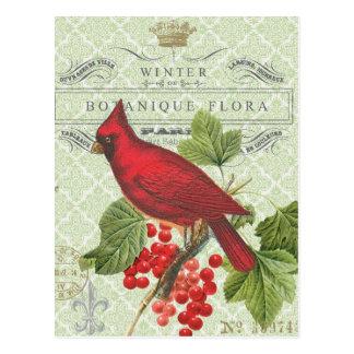 Cartão Postal Cardinal-cartão do vermelho de Feriado-Inverno do