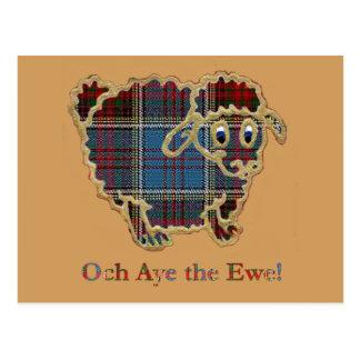 "Cartão Postal carneiros ""Och do tartan Aye a ovelha """