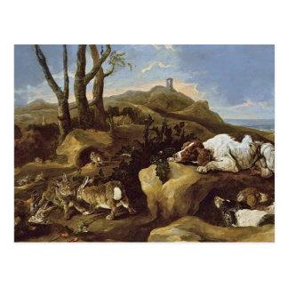 Cartão Postal Cartão: Spaniels que desengaçam coelhos nas dunas