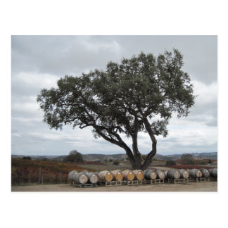 Cartão Postal Carvalho com tambores de vinho, Doce Robles