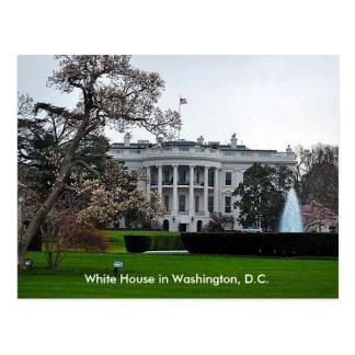 Cartão Postal Casa branca, Washington, C.C.