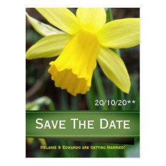 Cartão Postal Casamento personalizado do foco Daffodil macio